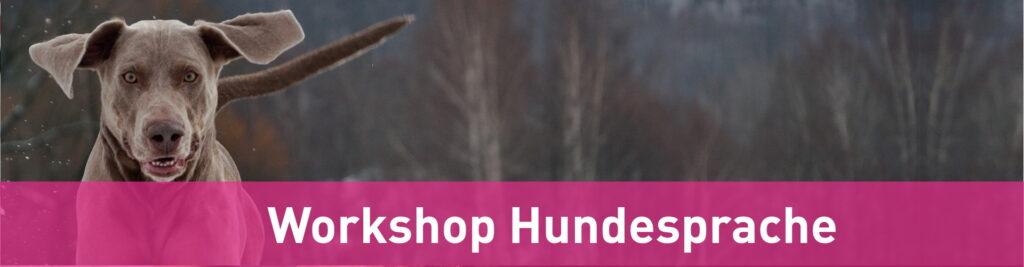 workshop-hundesprache
